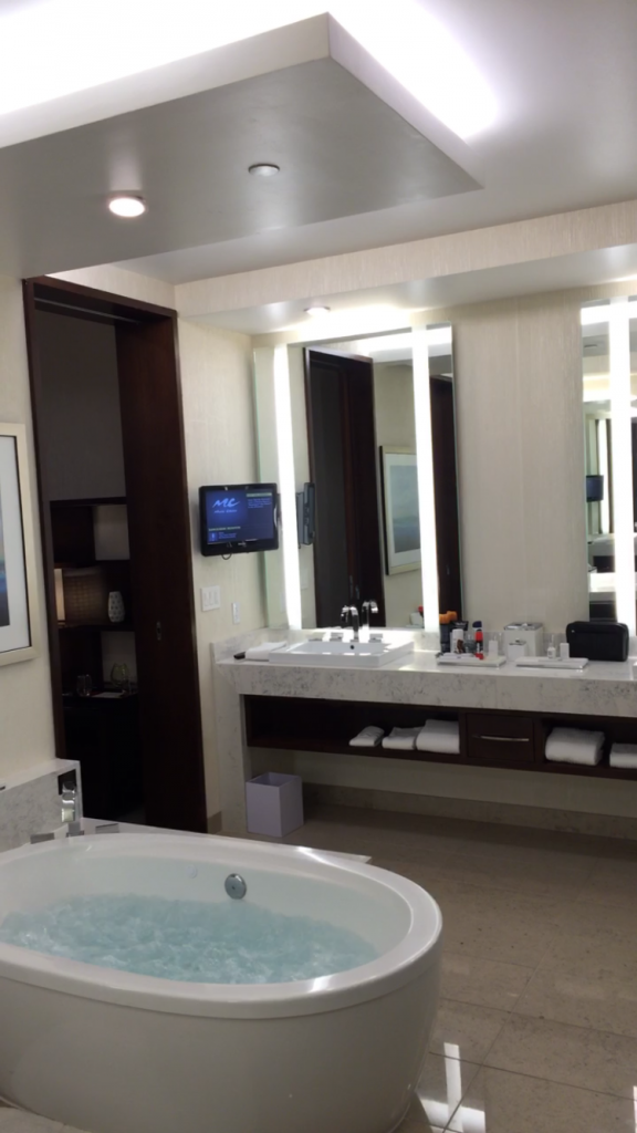 Aria Penthouse Bathroom