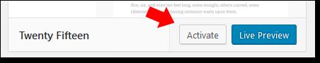 Wordpress Activate Theme