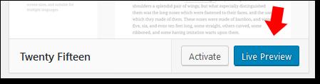 Wordpress Preview Theme