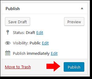 Wordpres Publish Post