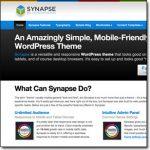 Synapse WordPress Theme