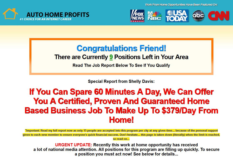 Screenshot of the Auto Home Profits Homepage