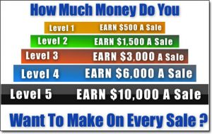The Big Profit System Compensation Plan