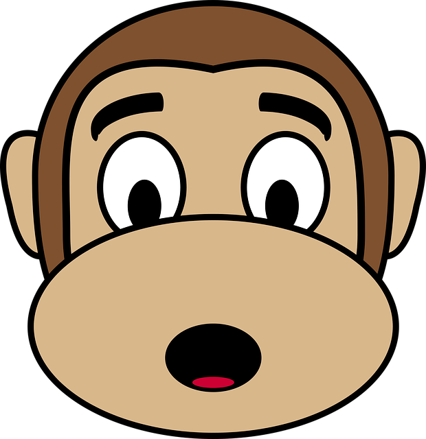 Monkey Shocked Face