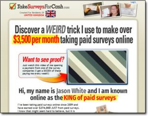 Take Surveys For Cash Website Screenshot