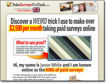 Take Surveys For Cash Website Screenshot