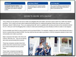 Computer Experts Online Website Screenshot