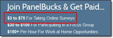 Panel Bucks Survey Earnings