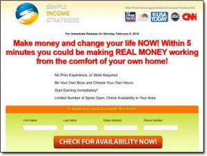 Simple Income Strategies Website Screenshot