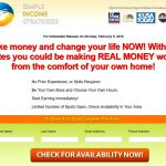 Simple Income Strategies Website Screenshot