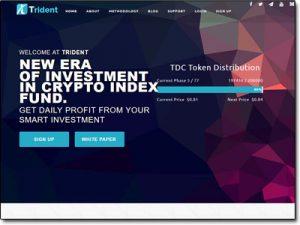 Trident Crypto Fund Website Screenshot