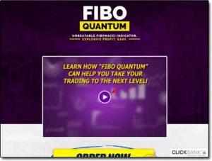 Fibo Quantum Software Website Screenshot