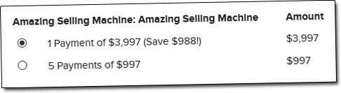 Amazing Selling Machine Cost