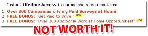 Paid Surveys At Home Members Area