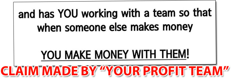 How Your Profit Team Works