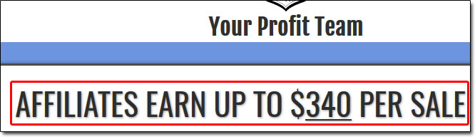 Your Profit Team Affiliate Page