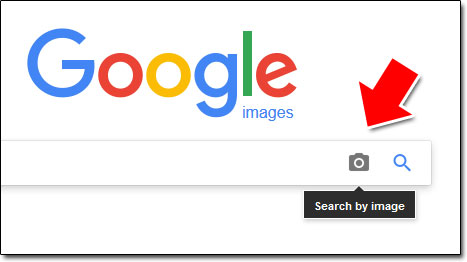 Google Reverse Image Search Tool