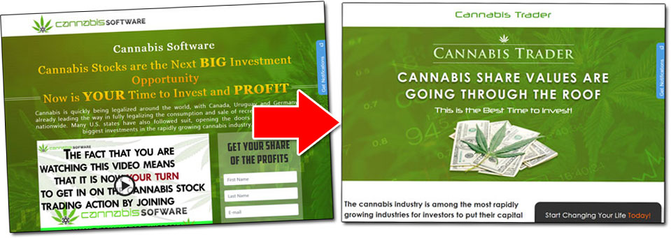 Cannabis Investment Scams