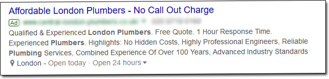 Example Local Google Ad Listing