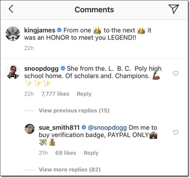 Instagram Verified Badge Scam Comment