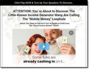 Mobile Money Loophole System Website Screenshot