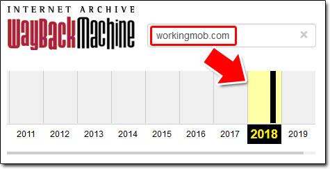 WorkingMob Launch Date