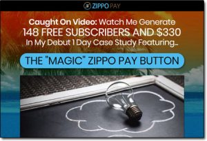 Zippo Pay Website Screenshot