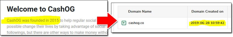 CashOG Domain Age