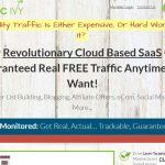 Traffic Ivy Website Screenshot