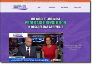 Green Leaf Fortune System Website Screenshot