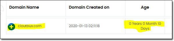 CloutBux Domain Age