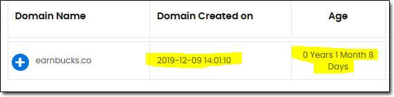 EarnBucks Domain Age
