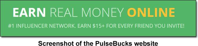 Income Claim Made By PulseBucks