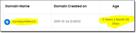 SurveyJunkies Domain Age