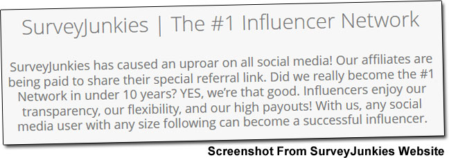 SurveyJunkies Influencer Network