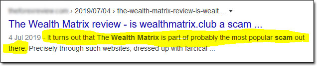 The Wealth Matrix Scam