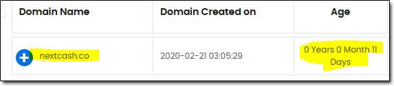 NextCash Domain Age