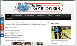 The Best Leaf Blowers Website Screenshot