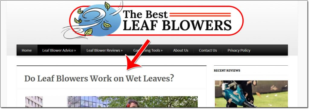 The Best Leaf Blowers Blog Post