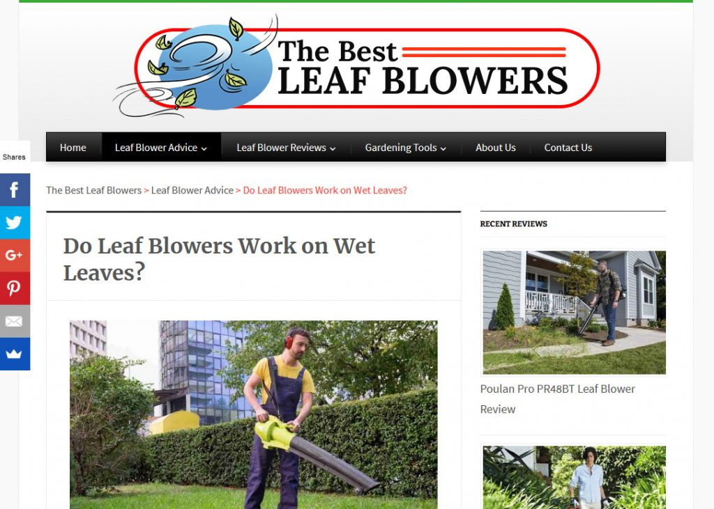 Leaf Blowers Niche Website