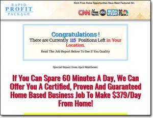 Rapid Profit Package Website Screenshot